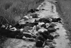 Hier habt ihr tote Wehrmacht… und tote alliierte…! Stalinistische… sind gerade keine da, aber Bilder von Scheiterhaufen für erwachsene satanische…, gibt's noch! Und den Weblog habt ihr eurer Mutter aus dem Portemonnaie geklaut! War dort auch eure Erberechtigung drin, und eure Gentests? Grüße – Erzdruide und Großmeister – Herr Thomas Michael Giesen – AZ-AAZ-BZ-AZ-BZ-Spielzerstörer zum Schutz – weißmagisch geschützt – AZ-BZ-CZ-DZ-AAZ-ZZ-LZ-SZ-TZ-VZ-OZ-AAZ-HDZ-TZ-AZ-©